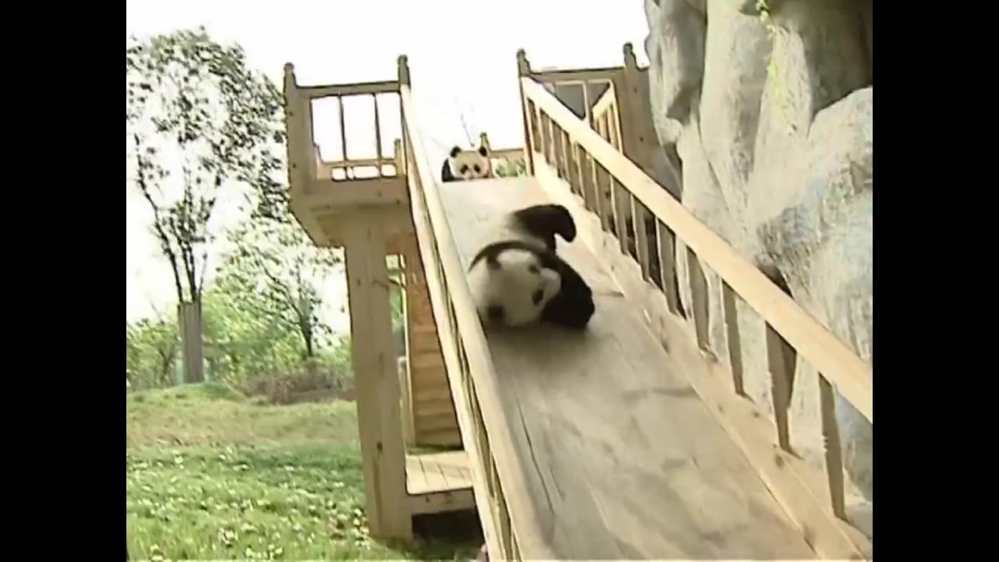 滑り台パンダ